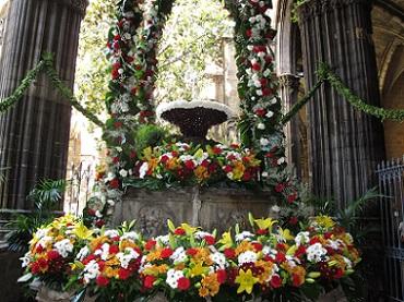 L'ou més famós de tots, al claustre de la catedral de Barcelona. / © Gg