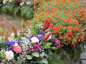 Clavells, tulipes, margarides, falguera...les fonts són de mil colors. / © Gg