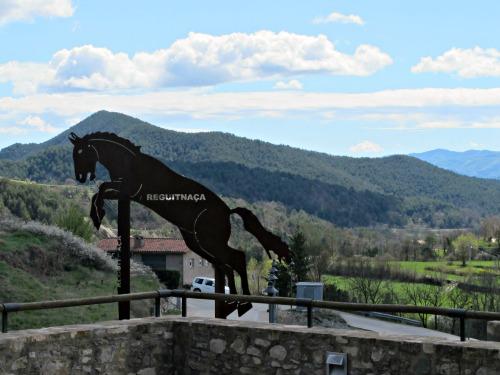 Diuen que el cavall crema el terra per allà on passa./© Gg