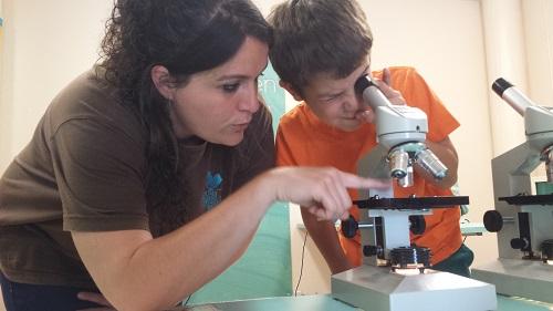 Mirem pel microscopi què neda a les aigües de l'estany /© Tot en Família