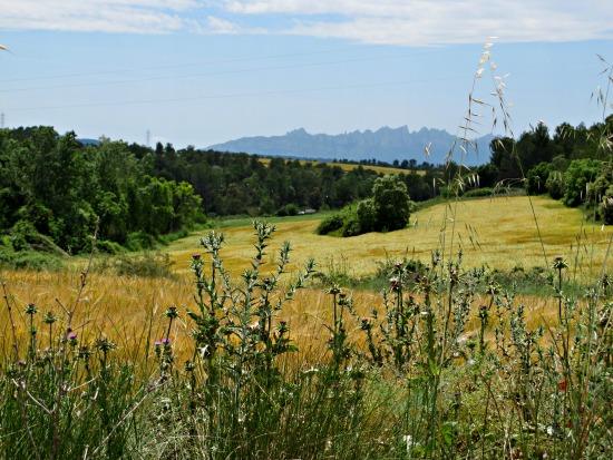 El Geoparc de la Catalunya Central va ser acceptat a la xarxa europea de geoparcs el setembre de 2012 /© Gg