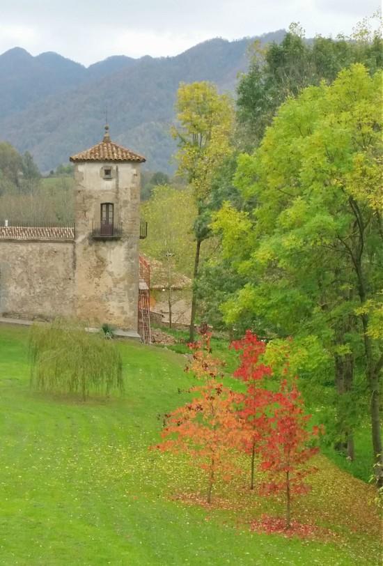 El Bisaura és una comarca natural situada entre Osona i el Ripollès. /© Gg