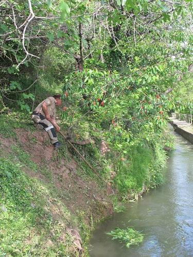 Drenen el canal, reparen esllavissades, esbrossen les herbes /© Gg