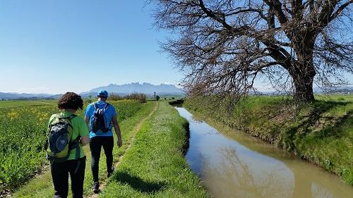 I al fons, una muntanya que vigila i ens anima a acabar la ruta: Montserrat/© Gg